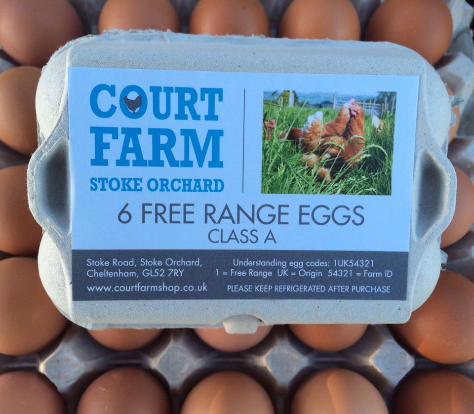 About Us & Our Farm | Court Farm Shop