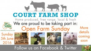 Open-Farm-Sunday-16