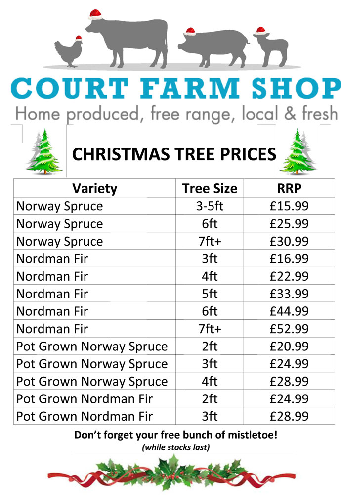 christmas-tree-sign-2016-prices