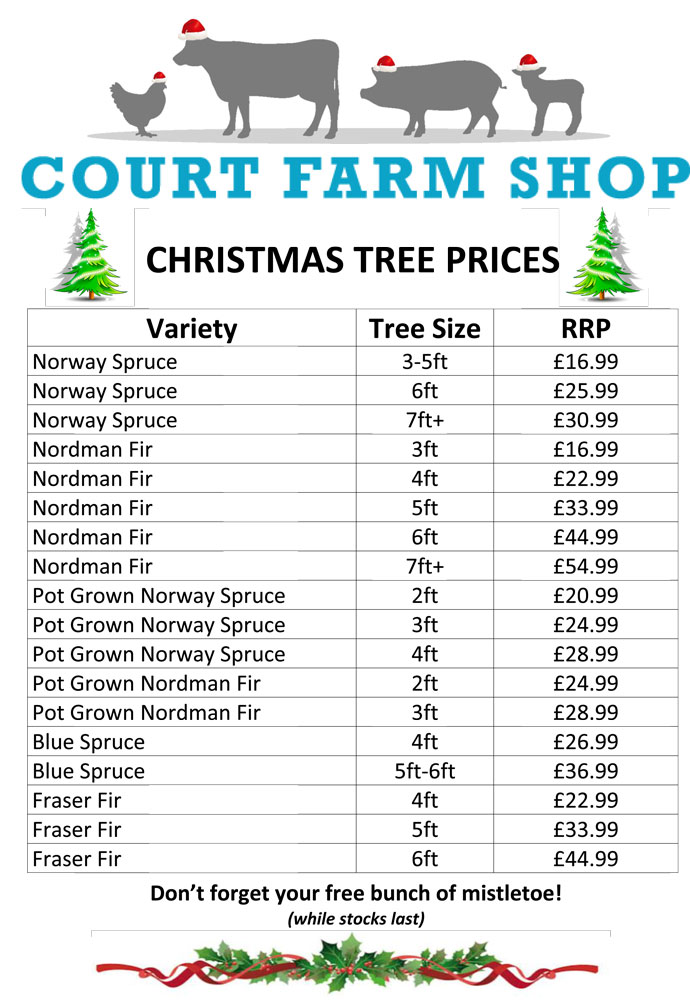 A3-Christmas-Tree-Sign-2017-Prices