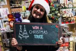Xmas 2018 - Win a Tree